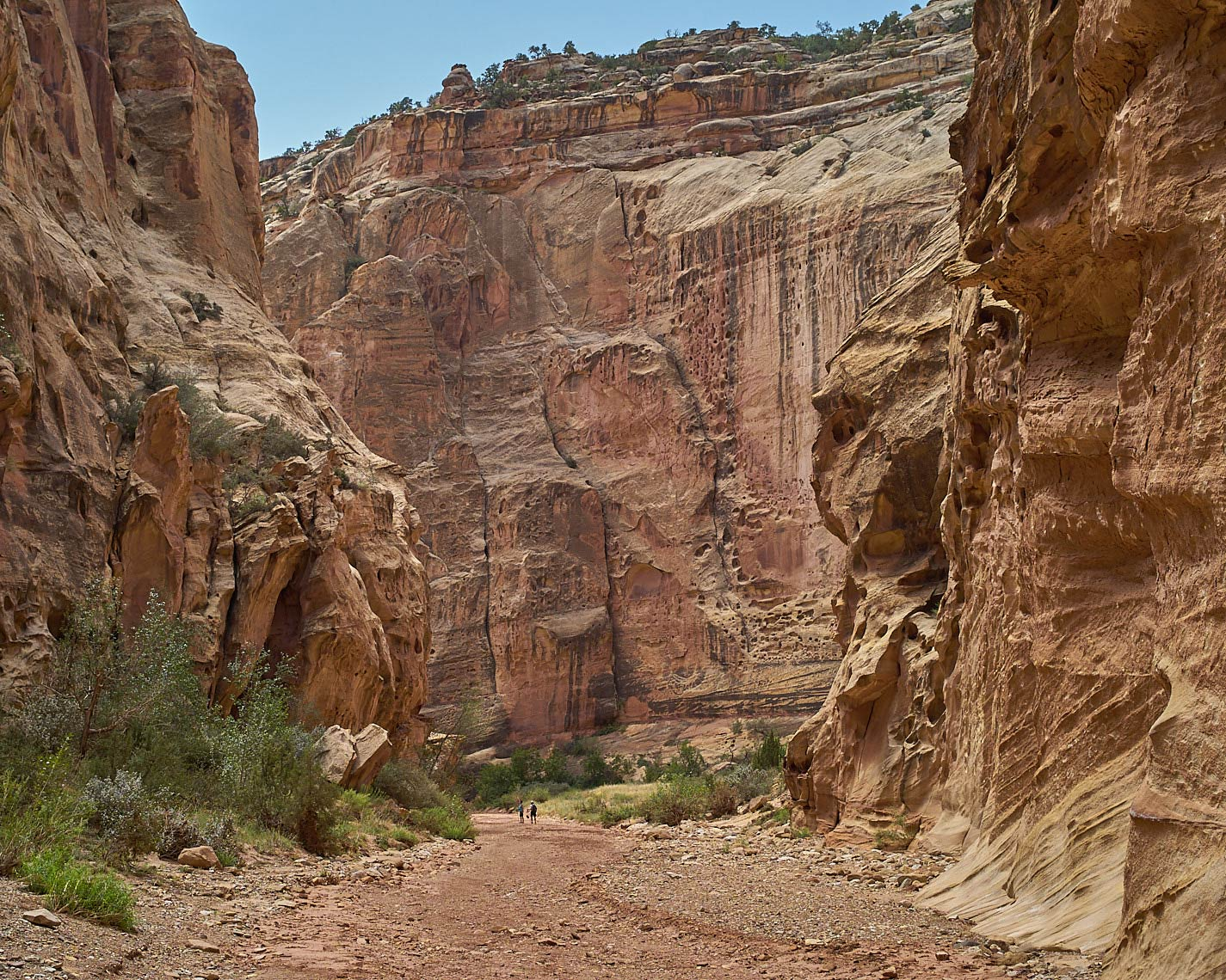 150830_Capitol-Gorge-CRNP-091